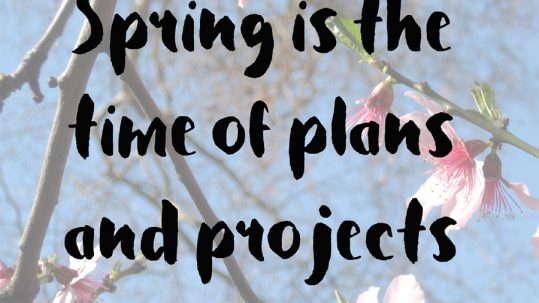 Spring is the time of planning and projects by leo tolstoy book quotes inspirational