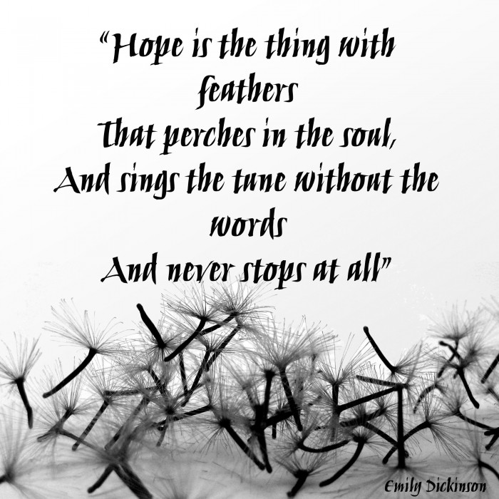 hope is the thing with feathers that perches in the soul and sings