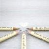 sense and sensibility gift pencils jane austen