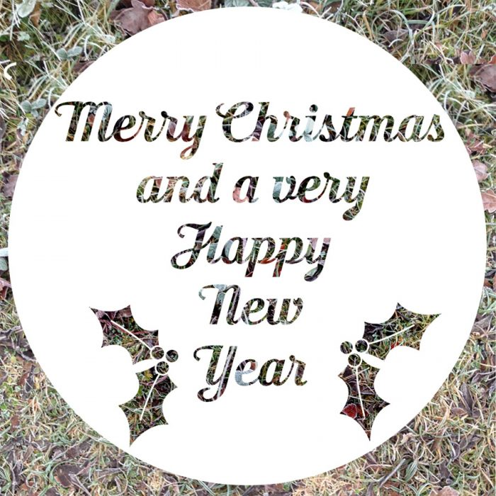 merry christmas to all my customers from six0six design