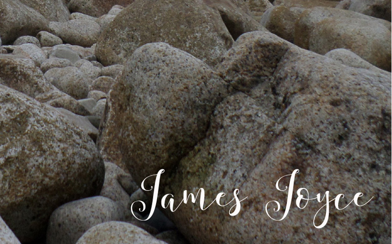 James Joyce birthday quote