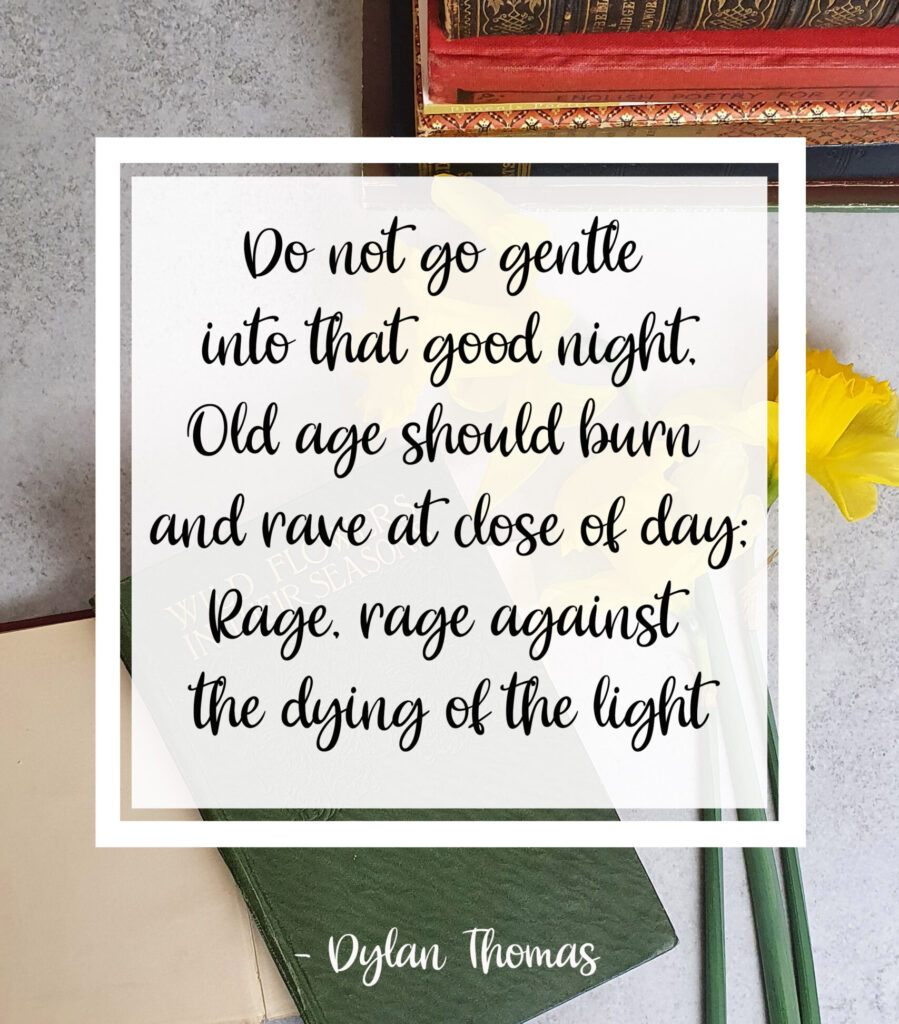 Do not go gentle into that good night, one of my favourite poems by Dylan Thomas for international poetry day