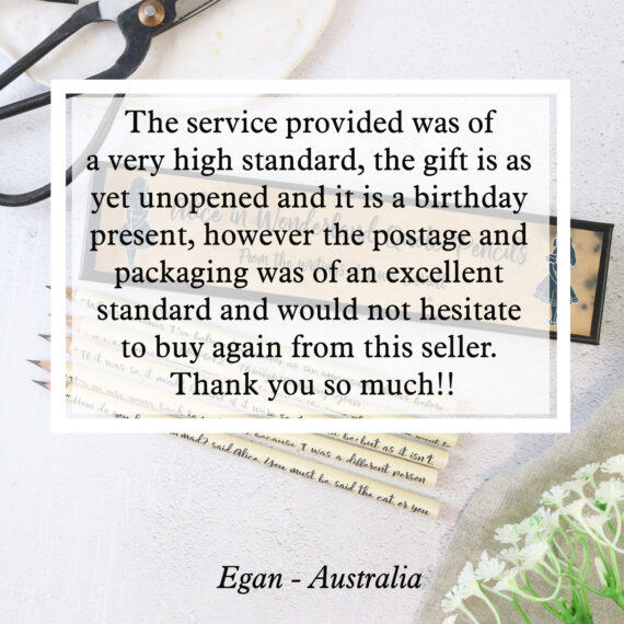 The service provided was of a very high standard, the gift is as yet unopened and it is a birthday present, however the postage and packaging was of an excellent standard and would not hesitate to buy again from this seller. Thank you so much!!